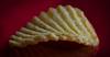 Crinkle Cut Crisp. (Yvette-) Tags: food crisp potato macromondays nikkorf28105mm nikond5100