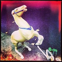 "#portlandhorseproject #horses #pdx • <a style=""font-size:0.8em;"" href=""https://www.flickr.com/photos/61640076@N04/9665340088/"" target=""_blank"">View on Flickr</a>"