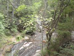 Ecopath ``Waterfalls canyon`` in Rhodopa Mountain Smolyan Bulgaria