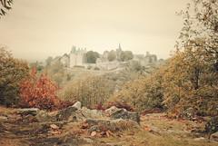 chteau de Sainte Suzanne (Pierrece) Tags: castle art nature architecture sainte nikon suzanne knight chteau saintesuzanne
