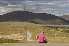 Waiting (i-lenticularis) Tags: nex5n canonfl55f12 altlens manuallens arboretum canberra australia sonynex5n sonynex5nwithcanonfl5512