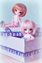 La caja sorpresa... ( Z u R i ) Tags: doll box handmade jp giveaway groove humptydumpty sorteo obitsu junplanning minidoll rotchan littledal mapetitecouturire