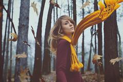 Untitled (Kara Smarsh) Tags: autumn selfportrait fall girl leaves yellow composite scarf photoshop wind surreal levitation femalemodel whimsical