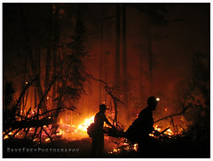 Midnight Sun Hotshots putting in hotline on the Sisters Complex. Oregon (Dave Frey) Tags: night oregon fire ngc firefighter