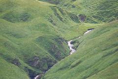 Irish Green (2) (2014).- (ancama_99(toni)) Tags: ireland vacation irish paisajes verde green rio river landscape landscapes nikon country paisaje irland campo vacaciones irlanda irlande 1000views 2014 10favs 10faves nikond60 25favs 25faves blinkagain