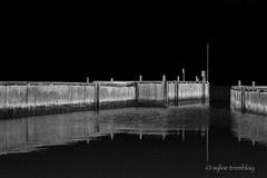 Trouble en eau calme (Sylvie Tremblay stdesignsphoto) Tags: light blackandwhite canon dark dock noir noiretblanc lumire platform quai sylvietremblay