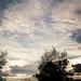 Iglakovo Ambient tones