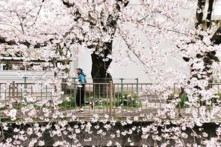 Onda River Machida