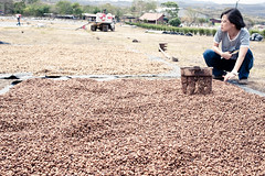 Drying coffees (skinnydiver) Tags: nicaragua mierisch