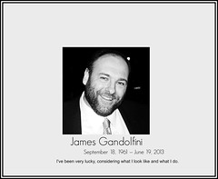 "[ RIP : JAMES GANDOLFINI || "" TONY SOPRAN..."