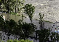 City of Calgary flooding (begineerphotos) Tags: calgary canon river flood alberta bow bowriver cityofcalgary cityofcalgaryflood