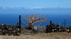 i00307 (claymore2211) Tags: blue tree sign stone fence one gate rocks no maui single winner trespassing superherochallenge challengeyou friendlychallenges thechallengefactory herowinner
