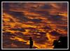 Sky on Fire (veggiesosage) Tags: nottingham morning sky clouds sunrise gx20 aficionados tamronspaf90mmf28dimacro