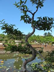 Hue, Vietnam 2013 (Direct_Relief) Tags: asia vietnam southeast hue directrelief 2013 kimlongcharityclinic seasia2013jharrison httpwwwdirectrelieforg photobydirectrelief httpdirectrelieforg