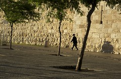 (Caitlin H. Faw) Tags: trees light shadow man color hat stone trash canon walking eos israel jerusalem may can jewish 5d walls briefcase oldcity strolling yerushalayim markiii jaffagate 2013 caitlinfaw caitlinfawphotography