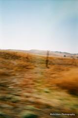 Pasture's Motion (Rich Klein Photography) Tags: camera beach 35mm hawaii fuji maui pasture disposable autaut