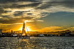Llegando a puerto / Arriving at the port (aldairuber) Tags: sunset sailboat port marina atardecer puestadesol crepusculo goldensunset cambrils tarragona anochecer velero goldcoast puertodeportivo costadorada twitlight