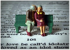Sitting on Shakespeare (Anne Mancini-Smith) Tags: love miniature shakespeare romance ho littlepeople sonnet