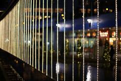 Christmas Lights Curtain (Apricot Cafe) Tags: japan f14 christmaslights tokyo winterillumination christmas cosinacarlzeissplanart1450ze tokyodomecity img544780