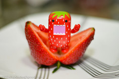 A Very Raw Maw Strawberry Broodling (WindUpDucks) Tags: fruits fruit strawberry strawberries domo qee toy2r