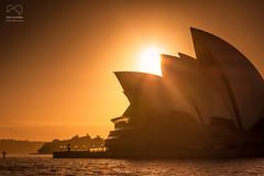 Sunrise over the Opera House (Rod Gotfried Photography) Tags: sunset sky sun house water sunshine sunrise canon opera harbour sydney dramatic australia l dslr 70300mm 550d t2i