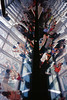 31050014 (furcafe) Tags: 上海 pudong lujiazui swfc 浦东 shanghaichina kodakelitechromeextracolor100 陸家嘴 shanghaiworldfinancialcenter 上海环球金融中心 minolta2835grokkorc19962005 minoltatc1c19962005 20120701