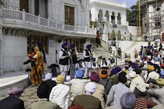 Listening to a musical troupe perfoming in front of Akal Takht (Ashish A) Tags: india canon buildings religious temple asia action religion crowd staircase sikh devotee devotees amritsar digitalslr sikhism goldentemple musicalinstruments whitebuilding canoncamera religioussymbol musicalperformance peoplesitting sittingpeople akaltakht goldentempleinamritsar canon650d musicaltroupe religioussongs canont4i peoplewearingturbans peopleinsidegoldentemple peoplelisteningtosongs
