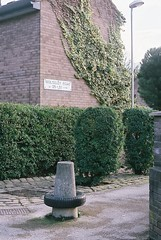 (KatherineMitchell) Tags: road street houses green sign bush ivy greenery suburbs bushes tyre