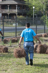 JAXPORT leadership and employees spruce up the port-owned property along the river in Mayport (JAXPORT) Tags: plants up grass pine youth port work children outside kid florida gardening straw property environmental cleanup clean dirt environment jacksonville fl volunteer fla mayport jaxport