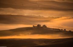 Misty morning at Montalcino. (AlbOst) Tags: trees italy mist farmhouse sunrise tuscany cypress montalcino morningsun morningmist mistymorning innamoramento italianlandscapes