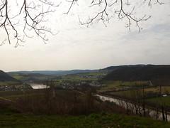 P1030139 (Unterwegs im Trierer Land) Tags: kanzem wiltingen saarbogen