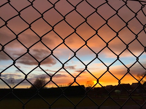Fenced In Sunset
