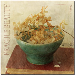 Fragile beauty (Kerstin Frank art) Tags: flowers stilllife texture ceramic book hydrangea skeletalmess kerstinfrankart kerstinfranktexture