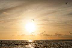 2013-218 (12Jeepgirl~Never look back...) Tags: ocean travel sunset beach water nikon florida ami annamariaisland d700 mygearandme