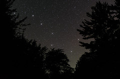 The Big Dipper (Bryan O'Toole) Tags: longexposure trees sky ontario canada stars nikon scenic nightsky constellation manfrotto bigdipper 30seconds northernontario algoma thebigdipper snowshoecamp wakomatalake nikkorafs2470mmf28 nikond7000 snowshoecampresort