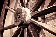 La ruota della fortuna