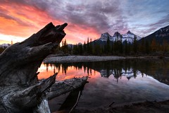 Three Sisters Sunrise (Marko Stavric) Tags: autumn canada mountains reflection fall clouds creek sunrise river dark rockies log october day calendar cloudy rocky canadian alberta threesisters getty peaks canmore bowriver bowvalley policemanscreek d7100 vision:sunset=0881