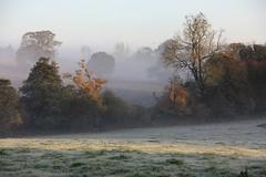 Frost, Fog & Sunshine (Donna JW) Tags: fog frost fields trees sunshine autumn gloucestershire picmonkey:app=editor explore mist england herowinner challengeyouwinner gamewinner friendlychallenges