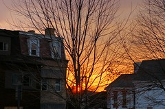 Cedar Ave. sunrise (upthecliffs) Tags: autumn trees houses windows sky fall beautiful clouds sunrise d50 dawn golden nikon pittsburgh pennsylvania branches neighborhood pa northside cloudporn sunup 412 skyporn