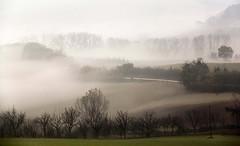 Atmosfere di dicembre (raffaphoto) Tags: italy landscape nebbia dicembre conero marche paesaggio atmosfere fogatmosphere