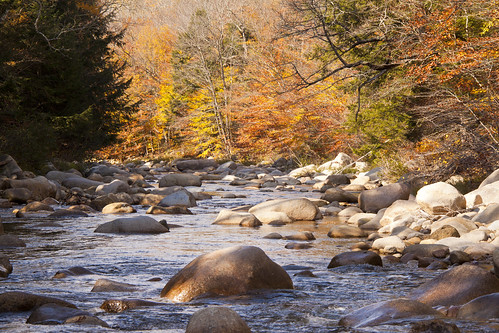 Mad River Fall 2013 (8)