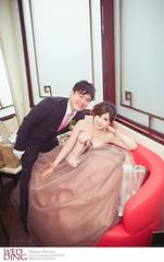 DSC_9001 (Neko11 ()) Tags: wedding portrait  neko                                             neko11
