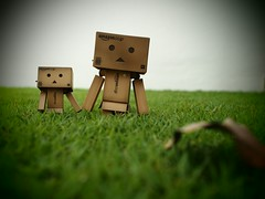 Stroll on the lawn (chiam_ck) Tags: lawn olympus figurine danbo 17mm zd revoltech flickrandroidapp:filter=none epl5