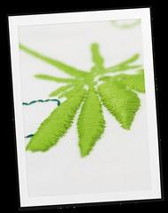 embroidery-software-7-polaroid-5 (Bernina International AG) Tags: 3d embroidery software projekt v7 bernina stickerei stumpwork trapunto punchwork berninaembroiderysoftware 3dembroidery sticksoftware berninasticksoftware