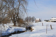 heavy snow lancaster (DebiWatson) Tags: winter snow farms