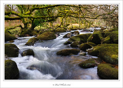 Dartmoor Stream (Paul_Wheeler) Tags: uk winter england green nature water river rocks stream boulders devon mass dartmoor dnp dartmeet
