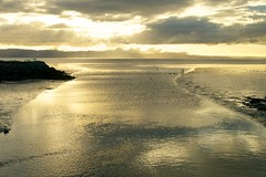 Hayward Shore sunset