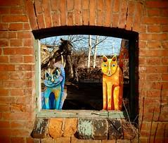 """krazy Kats"" (Mareike Scharmer) Tags: cat painted katze bunt catsart katzenkunst krazykats mareikescharmer"
