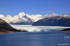 Panoramica del Glaciar Perito Moreno - Calafate (pniselba) Tags: elcalafate calafate glaciarperitomoreno topshots photosandcalendar worldwidelandscapes panoramafotográfico theoriginalgoldseal flickrsportal magicmomentsinyourlifelevel2 magicmomentsinyourlifelevel1 onlythebestofflickr