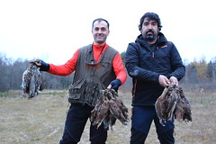 """Caza Becada / Hunting Woodcock • <a style=""""font-size:0.8em;"""" href=""""https://www.flickr.com/photos/61427906@N06/13853701144/"""" target=""""_blank"""">View on Flickr</a>"""